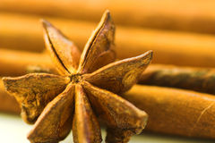 Anis. Spice macro Royalty Free Stock Images
