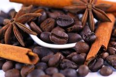 Anis, café et cannelle Photo stock