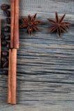 Anis de cannelle et d'étoile Photographie stock