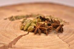Anis de estrela, cardamomo verde e sementes de erva-doce Imagem de Stock Royalty Free