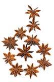 Anis de estrela chinês, anis de estrela, anis de estrela, Badiane, Badian, Badian Khatai, Bunga Lawang, Thakolam imagem de stock