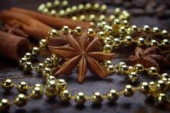 Anis de estrela e varas de canela entre o ouropel festivo Close-up imagem de stock