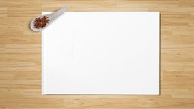 Anis de estrela nas colheres de madeira isoladas no Livro Branco imagem de stock royalty free