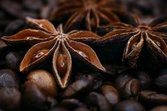 Anis de estrela no close-up dos feijões de café Imagem de Stock