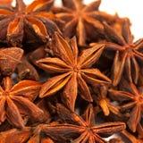 Anis de estrela ou verum do Illicium Fotografia de Stock