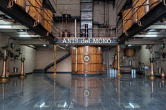 Anis del Mono Badalona Royalty Free Stock Image