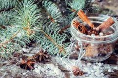 Anis e canela para o Natal Imagens de Stock