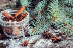 Anis e canela para o Natal Fotografia de Stock