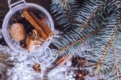 Anis e canela para o Natal Fotografia de Stock Royalty Free
