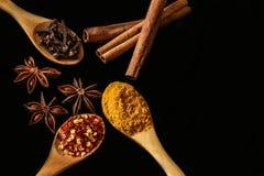Anis kyligt, kanel och andra kryddor - svart bakgrund Fotografering för Bildbyråer