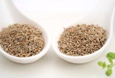 Anis seeds royalty free stock photos