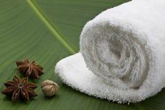 anis spa πετσέτα αστεριών Στοκ εικόνα με δικαίωμα ελεύθερης χρήσης