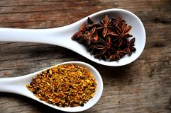 Anis and spice for meal condimentation food Royalty Free Stock Photography