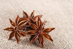 Anis star on burlap canvas background, close-up Stock Image