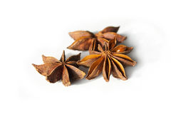 Anis stars spice. On white background Stock Image