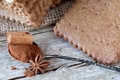 Anis temperado dos biscoitos, da canela e de estrela Imagens de Stock