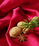 Anis, Walnuts and Cinnamon Royalty Free Stock Images