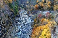 Anisclo峡谷在秋天,韦斯卡省,西班牙 库存图片