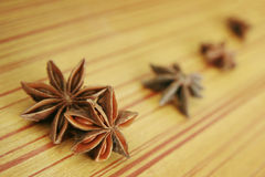 Anise Royalty Free Stock Photography