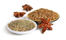 Anise, also called aniseed or Pimpinella anisum with fruits of s royalty free stock photography