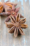 Anise aniseed star Stock Images
