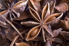 Anise background. Close-up of several same spices Stock Images