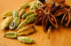 Anise and cardamom Royalty Free Stock Photos