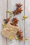 Anise and cardamom Stock Image