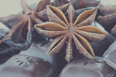Anise, Chocolate and Vanilla Royalty Free Stock Photo