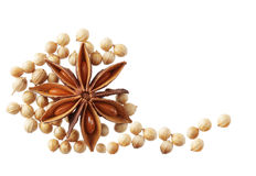 Anise and Cilantro seeds Stock Image