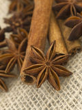 Anise and cinnamon. On the textured textile background stock images