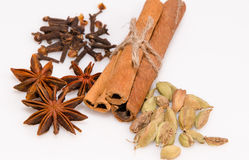 Anise, cinnamon, cardamom and cloves Stock Photography