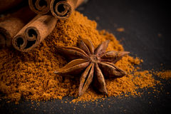 Anise and cinnamon close up Royalty Free Stock Photos