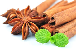 Anise, cinnamon and nutmeg Royalty Free Stock Images
