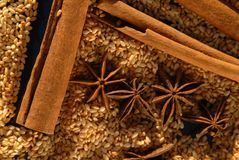 Anise cinnamon and sesame Stock Image
