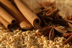 Anise cinnamon and sesame Royalty Free Stock Photos