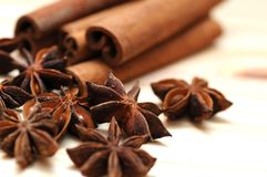 Anise and cinnamon spices. Space for text Royalty Free Stock Photography