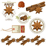 Anise and cinnamon. Anise stars and cinnamon sticks set Stock Images