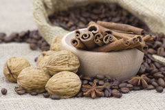 Anise, cinnamon sticks, walnuts and coffee beans Royalty Free Stock Photography