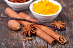 Anise, cinnamon and vanilla pods Royalty Free Stock Photography