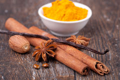 Anise, cinnamon and vanilla pods Stock Images