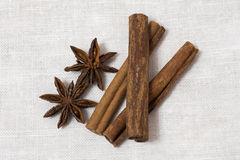Anise and cinnamon  on white background.  Royalty Free Stock Image