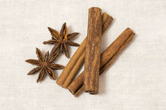 Anise and cinnamon  on white background.  Royalty Free Stock Photography