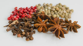 Anise, clove, red and green pepper Royalty Free Stock Image