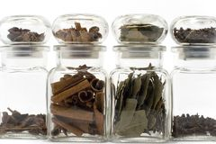 Anise, cloves, cinnamon, bayleaf. Spices in bottles isolated on white: anise, cloves, cinnamon, bayleaf Royalty Free Stock Photography