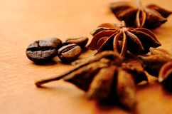 Anise and coffee beans Stock Photos