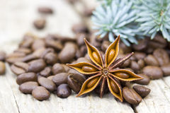 Anise, coffee beans and blue pine Stock Photography