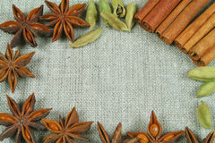 Anise frame Stock Photography