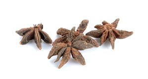 Anise isolated on the white background Royalty Free Stock Images