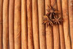Anise layin on cinnamon quills Stock Image